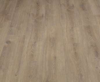 Ламинат Alsafloor 529SP Дуб Миндаль (Almond oak) SOLID PLUS
